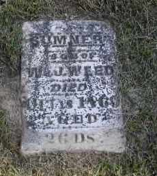 WEED, SUMMER - Gallia County, Ohio | SUMMER WEED - Ohio Gravestone Photos