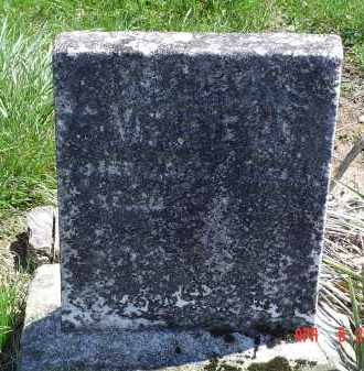 WEED, WILLIAM - Gallia County, Ohio | WILLIAM WEED - Ohio Gravestone Photos