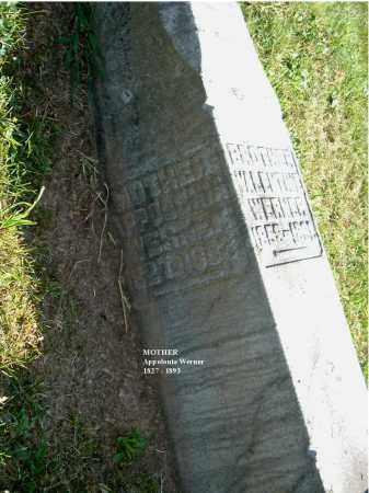 WERNER, APPOLONIA - Gallia County, Ohio | APPOLONIA WERNER - Ohio Gravestone Photos