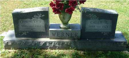 WERNER, CHAUNCEY F - Gallia County, Ohio | CHAUNCEY F WERNER - Ohio Gravestone Photos