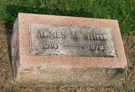 WHITE, AGNES M - Gallia County, Ohio | AGNES M WHITE - Ohio Gravestone Photos