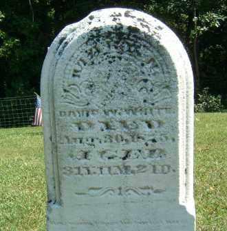 WHITE, DAVID W. - Gallia County, Ohio | DAVID W. WHITE - Ohio Gravestone Photos