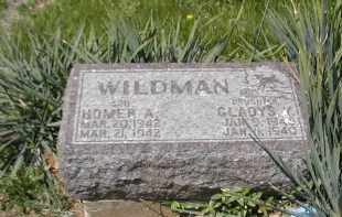 WILDMAN, HOMER - Gallia County, Ohio | HOMER WILDMAN - Ohio Gravestone Photos