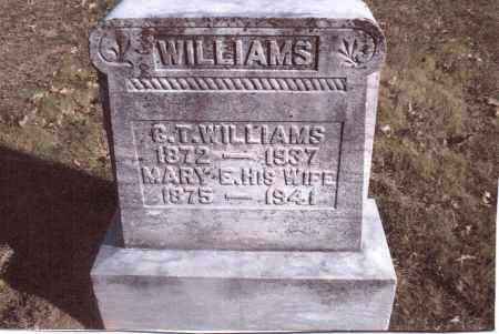 WILLIAMS, MARY E. - Gallia County, Ohio | MARY E. WILLIAMS - Ohio Gravestone Photos