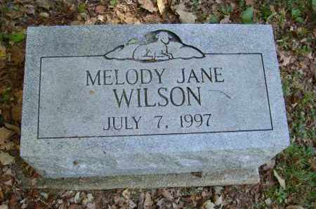 WILSON, MELODY - Gallia County, Ohio | MELODY WILSON - Ohio Gravestone Photos