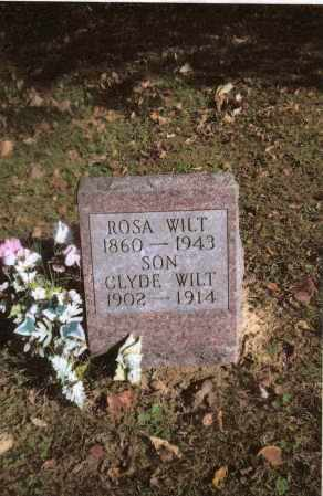 WILT, CLYDE - Gallia County, Ohio | CLYDE WILT - Ohio Gravestone Photos