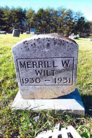 WILT, MERRILL W. - Gallia County, Ohio | MERRILL W. WILT - Ohio Gravestone Photos