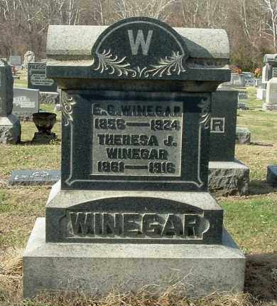 WINEGAR, THERESA J - Gallia County, Ohio | THERESA J WINEGAR - Ohio Gravestone Photos