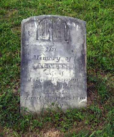 WISEMAN, AGNESS - Gallia County, Ohio | AGNESS WISEMAN - Ohio Gravestone Photos