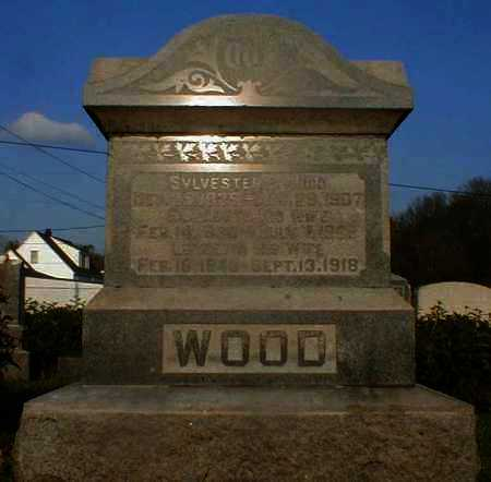 WOOD, SYLVESTER - Gallia County, Ohio | SYLVESTER WOOD - Ohio Gravestone Photos