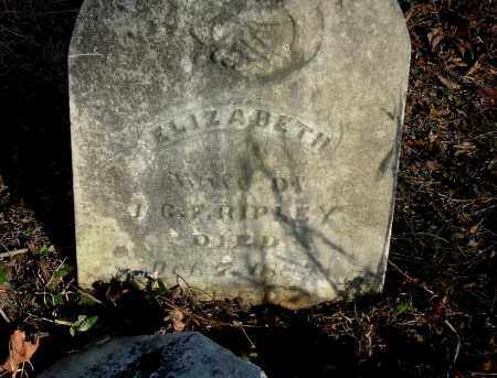 RIPLEY, ELIZABETH - Gallia County, Ohio | ELIZABETH RIPLEY - Ohio Gravestone Photos