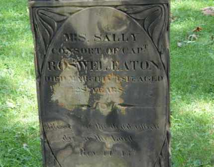 EATON, SALLY - Geauga County, Ohio | SALLY EATON - Ohio Gravestone Photos