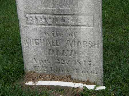 MARSH, ELVIRA - Geauga County, Ohio | ELVIRA MARSH - Ohio Gravestone Photos