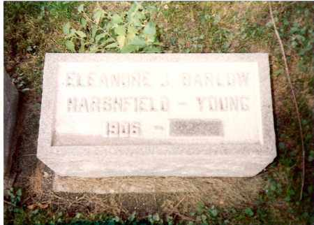 BARLOW-HARSHFIELD-YOUNG, ELEANORE - Greene County, Ohio | ELEANORE BARLOW-HARSHFIELD-YOUNG - Ohio Gravestone Photos