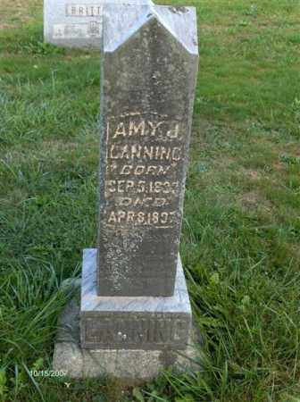 JONES LANNING, EMMA (AMY) LANE - Guernsey County, Ohio | EMMA (AMY) LANE JONES LANNING - Ohio Gravestone Photos