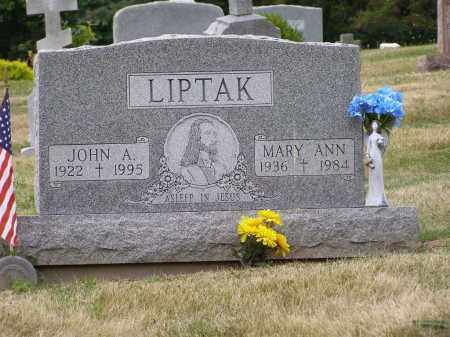 LIPTAK, MARY ANN - Guernsey County, Ohio | MARY ANN LIPTAK - Ohio Gravestone Photos