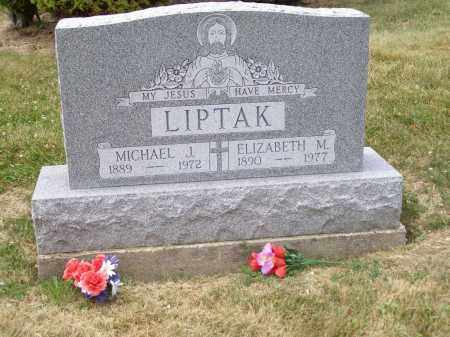 LIPTAK, MICHAEL J. - Guernsey County, Ohio | MICHAEL J. LIPTAK - Ohio Gravestone Photos