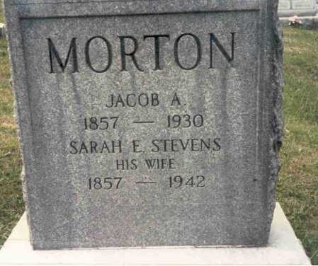 MORTON, JACOB A.. - Guernsey County, Ohio | JACOB A.. MORTON - Ohio Gravestone Photos