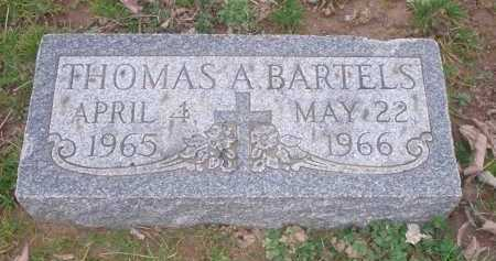 BARTELS, THOMAS A. - Hamilton County, Ohio | THOMAS A. BARTELS - Ohio Gravestone Photos