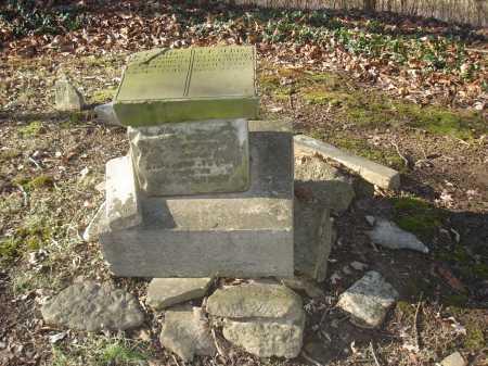 BIES, A. F. M. - Hamilton County, Ohio | A. F. M. BIES - Ohio Gravestone Photos