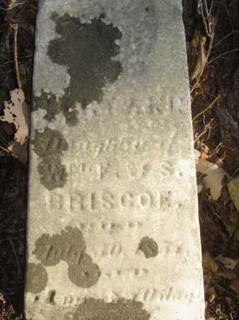 BRISCOE, MARY ANN - Hamilton County, Ohio | MARY ANN BRISCOE - Ohio Gravestone Photos