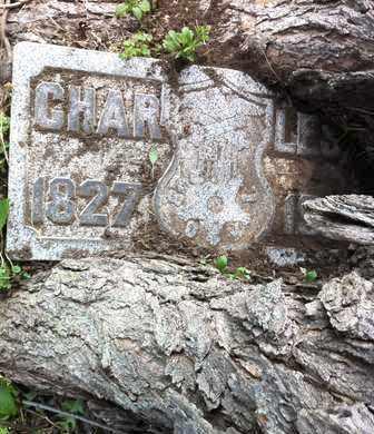 CHARLES, DRACH - Hamilton County, Ohio | DRACH CHARLES - Ohio Gravestone Photos