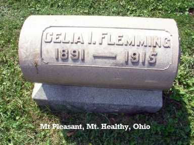 FLEMMING, CELIA - Hamilton County, Ohio | CELIA FLEMMING - Ohio Gravestone Photos