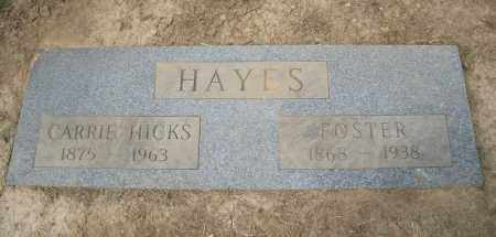 HICKS HAYES, CARRIE - Hamilton County, Ohio | CARRIE HICKS HAYES - Ohio Gravestone Photos