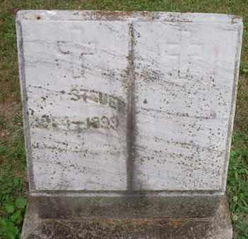 STEUER, MARY - Hamilton County, Ohio | MARY STEUER - Ohio Gravestone Photos