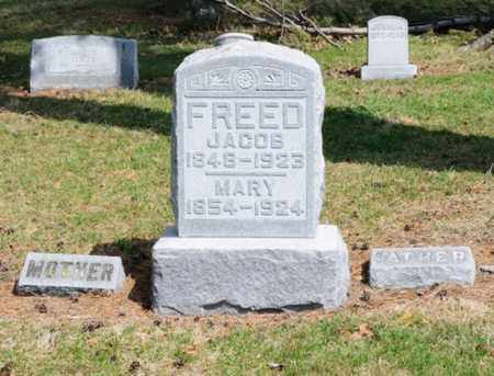 FREED, MARY - Hancock County, Ohio | MARY FREED - Ohio Gravestone Photos