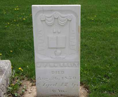 KRAFT, J.F.W. - Hardin County, Ohio | J.F.W. KRAFT - Ohio Gravestone Photos