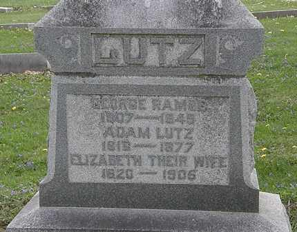 LUTZ, ELIZABETH - Hardin County, Ohio | ELIZABETH LUTZ - Ohio Gravestone Photos