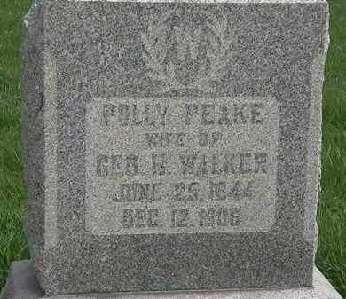 WALKER, POLLY - Hardin County, Ohio | POLLY WALKER - Ohio Gravestone Photos