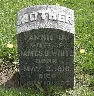 WHITE, FANNIE B. - Hardin County, Ohio | FANNIE B. WHITE - Ohio Gravestone Photos