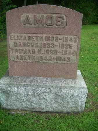AMOS, THOMAS - Harrison County, Ohio | THOMAS AMOS - Ohio Gravestone Photos