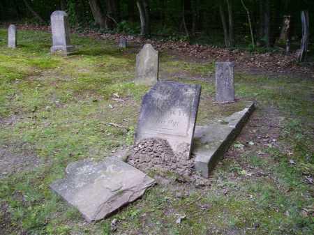 BOWERS, FREDERICK - Harrison County, Ohio | FREDERICK BOWERS - Ohio Gravestone Photos