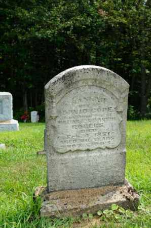 COPE, HANNAH - Harrison County, Ohio | HANNAH COPE - Ohio Gravestone Photos