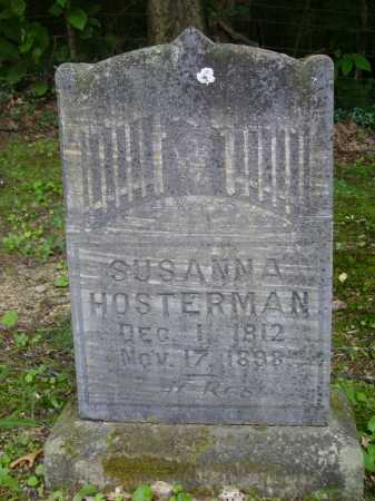 HOSTERMAN, SUSANNA - Harrison County, Ohio | SUSANNA HOSTERMAN - Ohio Gravestone Photos