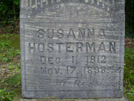 NARRAGON HOSTERMAN, SUSANNA - Harrison County, Ohio | SUSANNA NARRAGON HOSTERMAN - Ohio Gravestone Photos