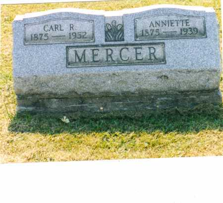 MURDOCK MERCER, CARL REESE - Harrison County, Ohio | CARL REESE MURDOCK MERCER - Ohio Gravestone Photos