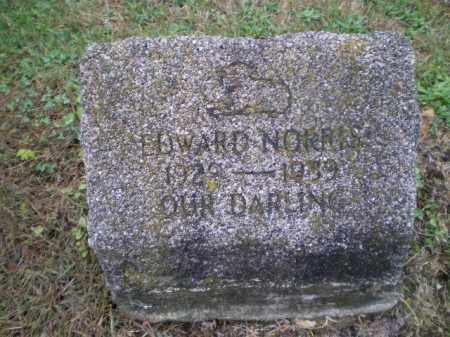 NORRIS, EDWARD - Harrison County, Ohio | EDWARD NORRIS - Ohio Gravestone Photos