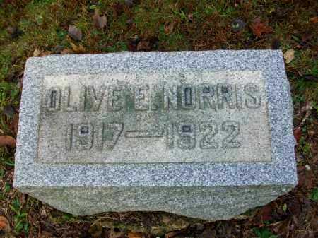 NORRIS, OLIVE ELIZABETH - Harrison County, Ohio | OLIVE ELIZABETH NORRIS - Ohio Gravestone Photos