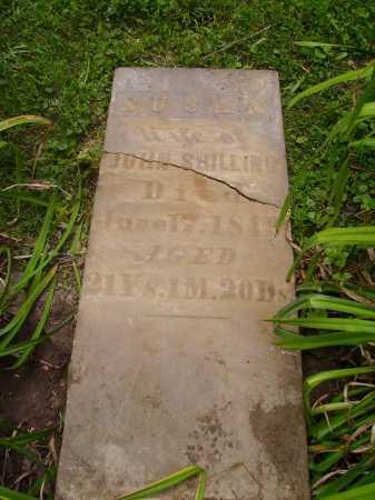 SHILLING, SUSAN - Harrison County, Ohio | SUSAN SHILLING - Ohio Gravestone Photos