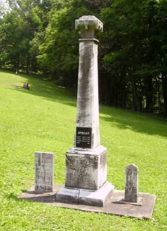 SPROAT, CHILD - OVERALL - Harrison County, Ohio | CHILD - OVERALL SPROAT - Ohio Gravestone Photos