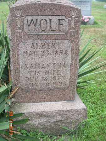 WOLF, ALBERT - Harrison County, Ohio | ALBERT WOLF - Ohio Gravestone Photos
