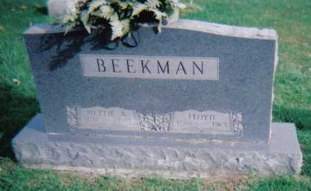 BEEKMAN, NETTIE A. - Highland County, Ohio | NETTIE A. BEEKMAN - Ohio Gravestone Photos