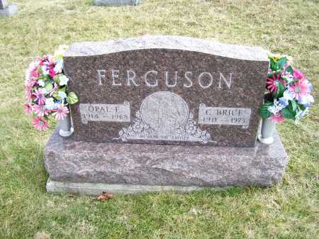 FERGUSON, OPAL E. - Highland County, Ohio | OPAL E. FERGUSON - Ohio Gravestone Photos