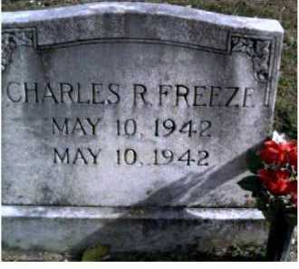 FREEZE, CHARLES R. - Highland County, Ohio | CHARLES R. FREEZE - Ohio Gravestone Photos