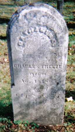 FREEZE, CATHERINE - Highland County, Ohio | CATHERINE FREEZE - Ohio Gravestone Photos