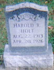 HOLT, HAROLD R. - Highland County, Ohio | HAROLD R. HOLT - Ohio Gravestone Photos